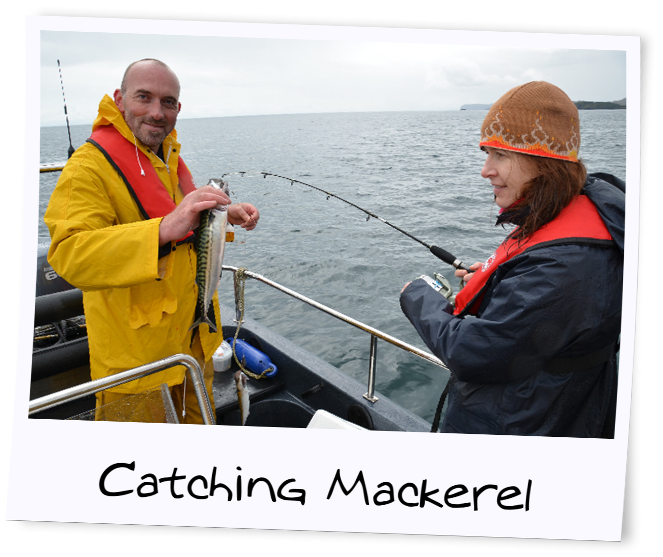 catching mackerel